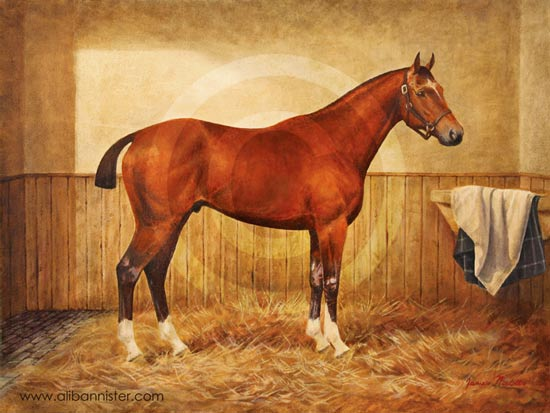Joey Painting Warhorse - buy signed prints