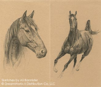 Sketches of Joey - War Horse by Michael Morpurgo
